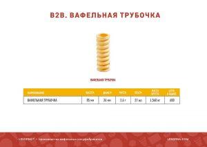 lekorna2020_rus_17